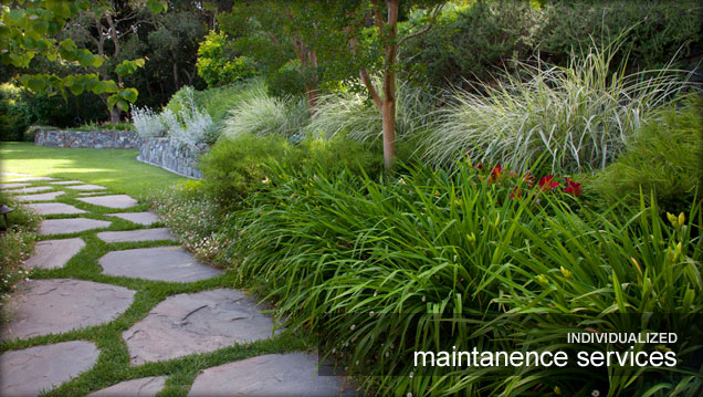 mill valley gardening