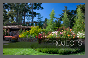 Mill valley garden design portfolio for Garden design mill valley