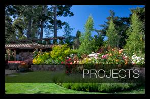 Mill valley garden design portfolio for Garden design mill valley